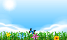 Blooming flowers under the clear blue sky Royalty Free Stock Photography