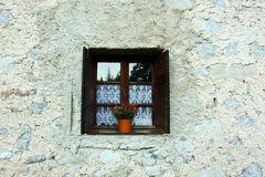 Blooming flowers in a vase in the portal brick-stone wall Royalty Free Stock Image