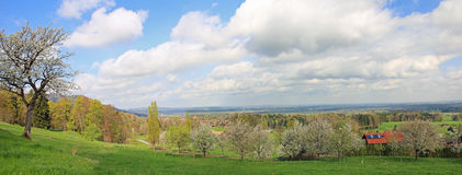 Blooming fruit orchard, bavarian countryside Royalty Free Stock Photo