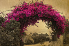 Blooming gateway. Grunge photo to a blooming gateway made on Corfu island Royalty Free Stock Image