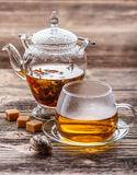 Blooming green tea Royalty Free Stock Photography