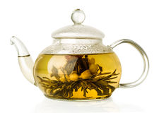 Blooming green tea in glass teapot. Isolated on white stock image