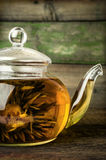 Blooming green tea in glass teapot Royalty Free Stock Photos