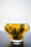 Blooming hot tea Stock Photos