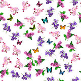 Blooming lilac flower. Very high quality original trendy vector seamless pattern with blooming lilac, plum and iris flower. Spring or summer design Royalty Free Stock Image