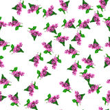 Blooming lilac flower. Very high quality original trendy vector seamless pattern with blooming lilac flower. Spring or summer design Stock Photos