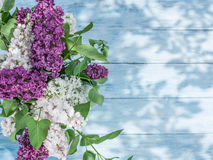 Blooming lilac flowers on the old wood. Royalty Free Stock Photography