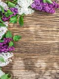 Blooming lilac flowers on the old wood. Stock Image