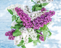 Blooming lilac flowers on the old wood. Stock Images