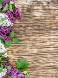 Blooming lilac flowers on the wooden table. Stock Photo