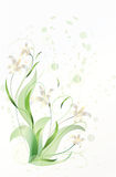 Blooming lilies. Vector illustration of blooming lilies with green leaves and tendrils tendrils Royalty Free Stock Photography