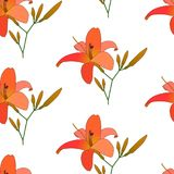 Blooming lilies floral pattern vector. Illustration. Background of colorful flowers. Seamless flowers pattern isolated on white background. Pattern for printing Royalty Free Stock Photos