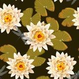 Blooming lotus seamless Royalty Free Stock Images