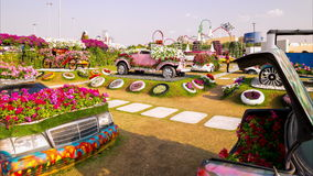 Blooming magic garden 4k time lapse from dubai uae stock footage