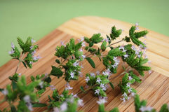 Blooming Marjoram. Freshly picked blooming marjoram on a wooden desk Royalty Free Stock Photography