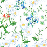 Blooming meadow floral seamless vector print Stock Photos