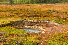Small Geothermal Spring at Geysers Valley, Iceland Royalty Free Stock Photography
