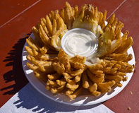 Blooming Onion - State Fair Junk Food. A cut and fried blooming onion snack at a country fair.  Not the most healthy choice Stock Photo