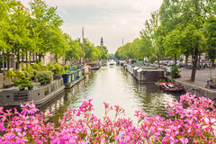 Blooming pink flowers on an Amsterdam canal bridge Stock Image