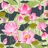 Blooming pink lotus flowers. Leaves, buds and lotus flowers, seamless vector background Royalty Free Stock Images