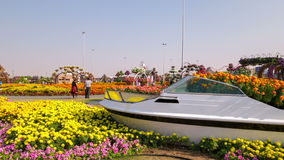 Blooming place time lapse from dubai magic garden stock video