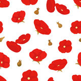 Blooming poppies seamless pattern. Illustration Stock Photo