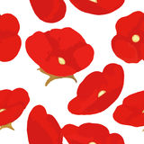 Blooming poppies seamless pattern. Illustration Stock Image