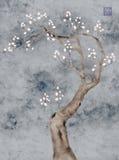 Blooming prunus tree. Prunus tree in spring bloom, stylized Stock Photos