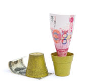 Blooming RMB and rotten USD Royalty Free Stock Photography