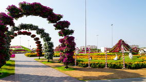 Blooming road time lapse from magic garden dubai stock footage