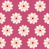 Blooming sakura flowers. Vector seamless pattern. Royalty Free Stock Photography