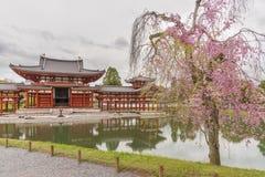 Byodo-in Buddhist temple in Uji, Kyoto, Japan Royalty Free Stock Image
