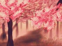 Blooming Sakura Trees Royalty Free Stock Photography