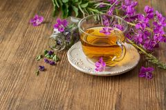 Blooming Sally in a transparent cup and fresh Stock Photo