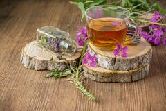Blooming Sally in a transparent cup and fresh Royalty Free Stock Photo