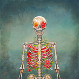 Blooming skeleton on the grunge background Stock Photos