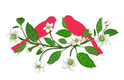White Flowers and Pink Birds on Twig Composition Royalty Free Stock Image