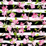 Blooming Spring Flowers Pattern Background. Seamless Fashion Print Stock Photo