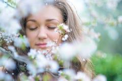 Blooming spring Stock Image