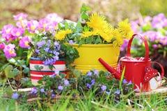 Blooming still life Royalty Free Stock Photo