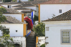 Blooming streets of Obidos, Portugal Royalty Free Stock Image