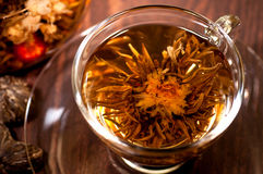 Blooming tea close up in a cup Stock Photography