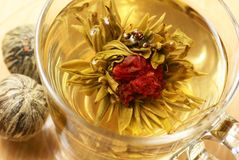Blooming tea. Close-up of cup with blooming tea Royalty Free Stock Images
