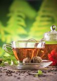 Blooming tea Royalty Free Stock Image