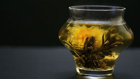 Blooming tea stock video