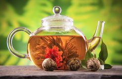 Blooming tea Royalty Free Stock Photos
