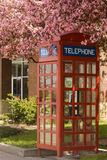 Blooming telephone booth Stock Photo