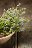 Blooming thyme in a ceramic plate Stock Photography