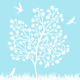 Blooming tree and birds Royalty Free Stock Image