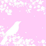 Blooming tree and birds Royalty Free Stock Photos